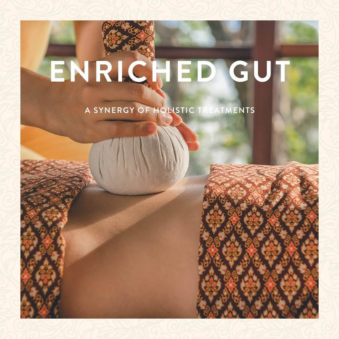 Enriched Gut Wellness Program